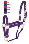 Nyl Halter W/Tip Avg Hor Adjustable