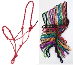 Rope Halter Twst Cr & Ns Assorted Colors 12-Pack
